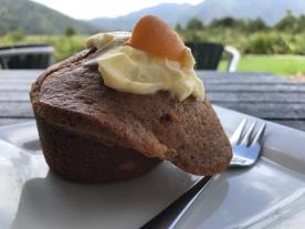 Aprikosen-Creamcheese-Muffin