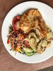 Kartoffelgratin, Salat und Hähnchen